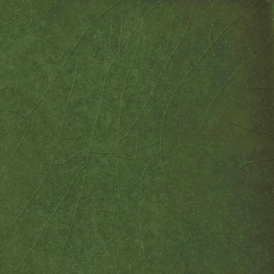 VICTORIA Emerald green craquelè