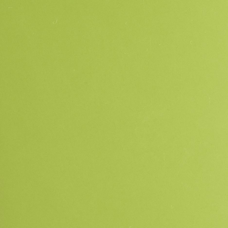 VICTORIA Pistachio green
